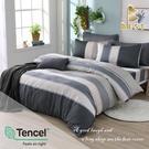 【BEST寢飾】天絲床包兩用被四件式 加大6x6.2尺 仙德瑞拉 100%頂級天絲 萊賽爾 附正天絲吊牌