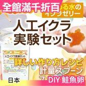 【NICHIGA 自由研究 DIY 鮭魚卵】日本 國小實驗課 盒玩 食玩 食戟之靈 知育菓子【小福部屋】