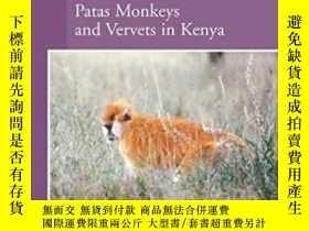 二手書博民逛書店Socioecology罕見Of Adult Female Patas Monkeys And Vervet In