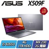 【ASUS華碩】Vivobook 15 X509FJ-0111G8265U 星空灰   ◢15吋窄邊框輕薄型筆電 ◣