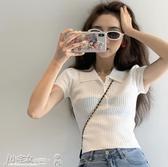 短袖Polo衫 短袖t恤女夏2020年新款設計感小眾翻領polo衫法式短款高腰上衣服 小宅女