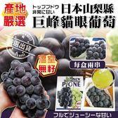 【果之蔬-全省免運費】日本山梨縣溫室無籽巨峰貓眼葡萄X1盒【2串/盒 每串約400克±10%】