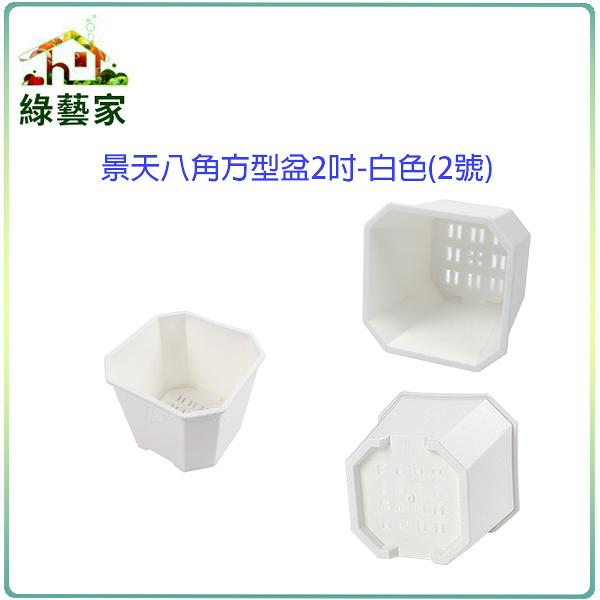 【綠藝家】景天八角方型盆2吋-白色(2號)