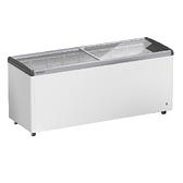 LIEBHERR 德國利勃 6尺3 玻璃推拉冷凍櫃457L (EFE-6002)