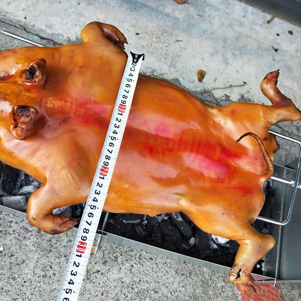 ㊣盅龐水產 ◇烤乳豬(含烤肉架)◇炮豚最秋◇零$3745元/組◇ 淨重3.5kg±10%/隻 ◇ 夯肉