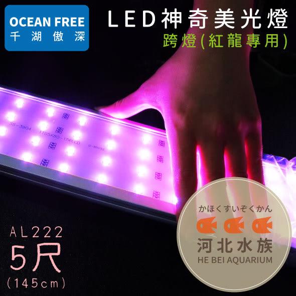 [ 河北水族 ] OF傲深 【 LED神奇美光燈 紅龍 5尺 145cm AL222 】 增豔燈 LED燈 跨燈 五尺