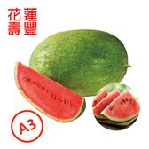 【鮮食優多】花蓮壽豐果艷西瓜A3級(13.2kg~14.4kg)