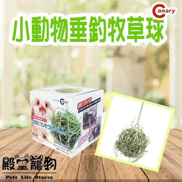 【殿堂寵物】CANARY 牧草球 可以放置牧草 點心 草磚 兔子 天竺鼠