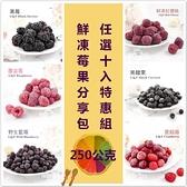 【莓果工坊】莓果分享包(十包任意組:蔓越莓、藍莓、覆盆莓、櫻桃、黑醋栗、黑莓、草莓、芒果)