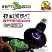 烏龜曬背燈陸龜爬蟲加熱燈倉鼠寵物刺?變色龍守宮夜燈  【快速出貨】