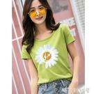 小雛菊短袖t恤女裝夏裝新款2020年純棉綠色上衣半袖網紅ins超火潮「時尚彩紅屋」