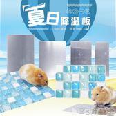 倉鼠消暑 倉鼠金絲熊兔子龍貓荷蘭豬豚鼠刺猬消暑降溫散熱板片夏季降溫用品 寶貝計畫