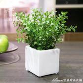 家居飾品 仿真花植物 現代簡約假花 仿真小盆栽客廳茶幾裝飾擺件艾美時尚衣櫥