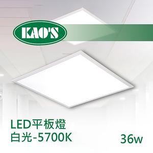 HONEY COMB LED 超薄平板燈 2入一組 TK23136N86 白光