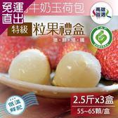 家購網嚴選 大樹牛奶玉荷包特級粒果禮盒2.5台斤x3盒(55~65顆/盒)【免運直出】