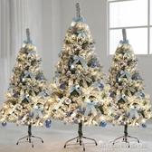 圣誕節ins蘭系植絨雪松圣誕樹套餐1.2/1.5/1.8/2.1米商場櫥窗裝飾WD 晴天時尚館