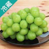 【日本】岡山縣麝香綠葡萄1串/盒【愛買冷藏】