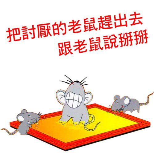Qmishop 超黏黏鼠板捕鼠器 抓老鼠利器一組兩片入 小款【J1292】