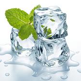 【BlueCat】仿真 透明 冰塊 拍攝道具 (混裝) 透明冰塊 碎冰 塑膠冰塊 假冰塊
