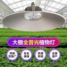 植物補光燈 全光譜植物生長補光燈溫室大棚室內家用花卉蔬菜綠植多【全館免運】