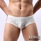 情趣用品-商品買送潤滑液*2-女帝-VENUS低腰性感緹花平角內褲白情趣用品