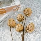 【BlueCat】鐵絲長梗 天然乾燥 朝鮮薊 拍照道具 插花 拍攝道具 居家裝飾 乾花 房間佈置