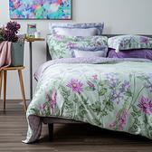 (組)梔晴天絲床包兩用被組雙人+天絲記憶曲線型對枕