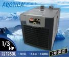 【免運】ARCTICA 阿提卡 冷卻機 1/3HP 阿緹卡 阿堤卡 冷水機 E-DBA250 魚事職人