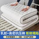 厚度9cm 乳膠床墊軟墊冰絲榻榻米海綿單...