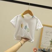 兒童t恤短袖體恤純棉上衣寶寶半袖童裝【淘夢屋】