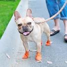 小狗狗鞋子雨鞋泰迪鞋一套4只法斗比熊小型犬腳套涼鞋寵物的鞋套 快速出貨