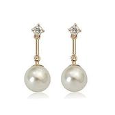 耳環 玫瑰金 925純銀鑲鑽-精緻耀眼情人節生日禮物女飾品2色73gs133【時尚巴黎】