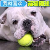 狗狗玩具球彈力球耐咬磨牙網球寵物幼犬訓練