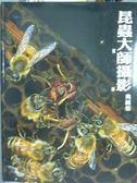 【書寶二手書T6/攝影_PMV】昆蟲大師攝影典藏集-蜜蜂_江敬皓