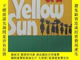 二手書博民逛書店Half罕見of a Yellow SunY289621 Chi
