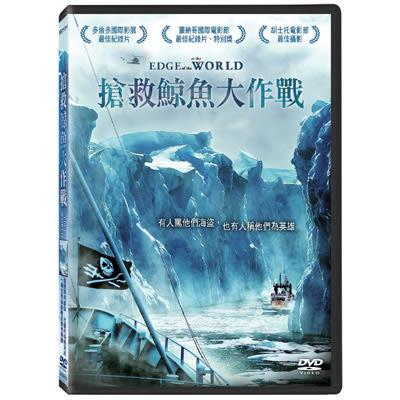 搶救鯨魚大作戰DVD