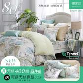 【限時買再送同款靠墊1入】鴻宇 雙人床包薄被套組 天絲400織 萊斯特 台灣製2203
