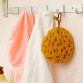 ◄ 生活家精品 ►【N151】珊瑚蜂天然原色海綿 去汙 洗碗 洗臉 沐浴 蜂窩 吸水 懸掛 晾乾 廚房