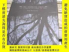 二手書博民逛書店THE罕見BUDDING TREE 萌芽中的樹Y247341 外