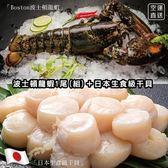 【WANG-全省免運】海鮮組合-活凍波士頓螯龍蝦1隻+北海道4S干貝一盒