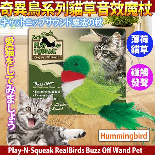 【 培菓平價寵物網 】美國Play-N-Squeak狂野森林》奇異鳥系列貓草音效魔杖-蜂鳥