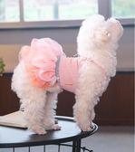 小狗狗衣服蓬蓬裙幼犬春秋薄款寵物夏裝裙子