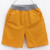 童裝男童夏裝短褲休閒運動褲兒童褲子薄款小孩中大童褲寶寶純棉 滿天星