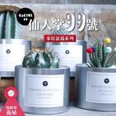 CARMO鐵罐仙人掌99號裝飾花盆 多肉盆栽【US007007】