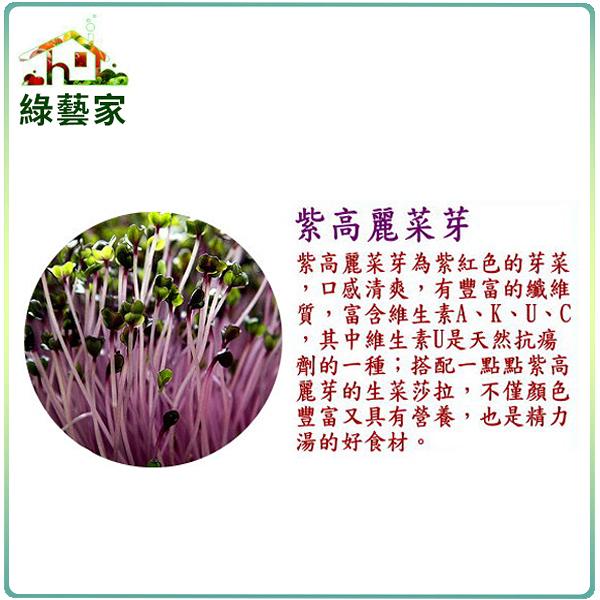 【綠藝家】J12.紫高麗菜芽(芽菜種子)1000顆