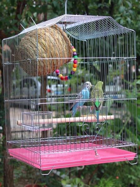 鳥籠 鸚鵡鳥籠子大號不銹鋼色虎皮八哥鷯哥玄鳳牡丹畫眉鸚鵡養殖大鳥籠【萬聖夜來臨】