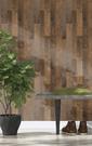 棕色木紋 木板紋 rasch(德國壁紙) 2019 / 941609