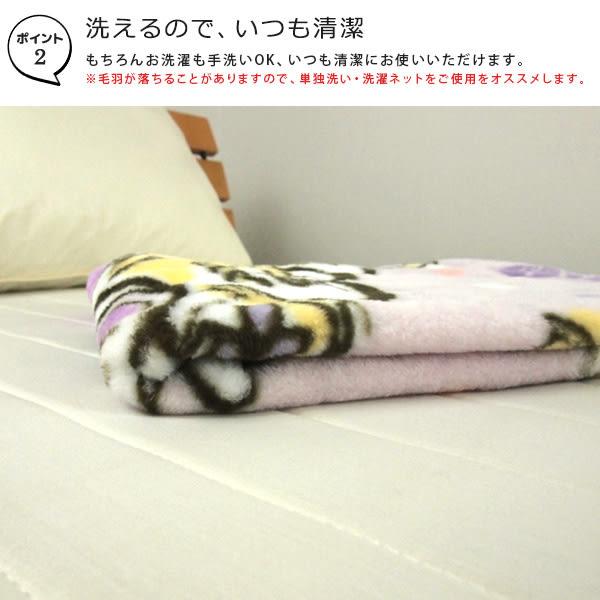 迪士尼公主 毛毯 單人毯 膝上毯 魔髮奇緣 珊瑚絨毛 舒服柔軟 Disney 日本正版 該該貝比日本精品 ☆