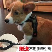 小狗狗用品胸背帶牽引繩泰迪柯基法斗小型犬狗繩子寵物狗鍊子狗帶  晴光小語