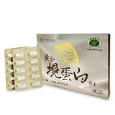 兆鴻生技 黃金蜆蛋白膠囊60粒 新包裝